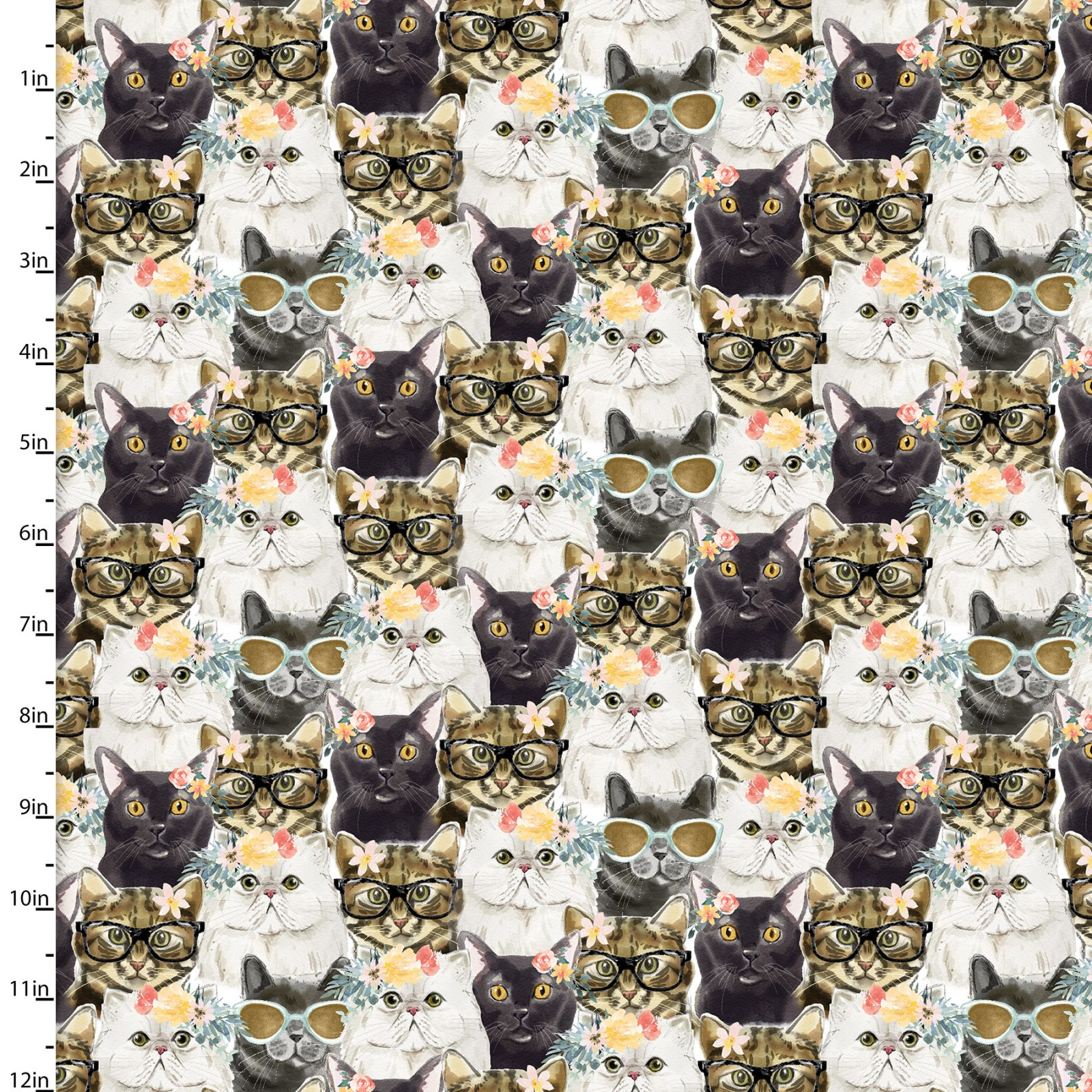 Everyday Is Caturday    Packed Cats    Multi