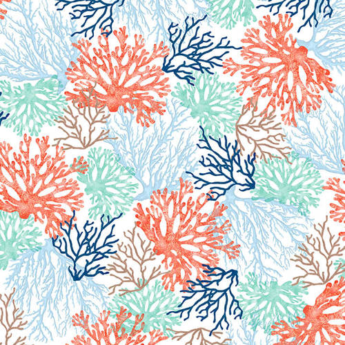 Coastal Dreams Coral on White