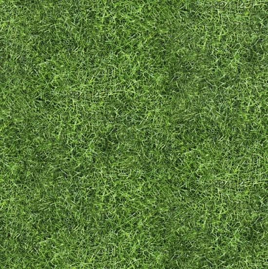 Score Grass Texture