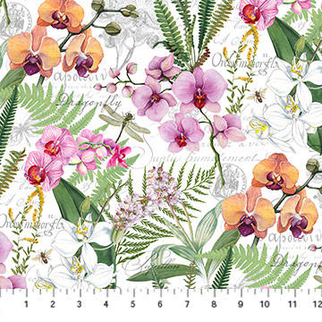 Orchids In Bloom   Orchids and Ferns Digital Print   White Multi