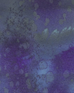 Fossil Fern Blueberry Jam